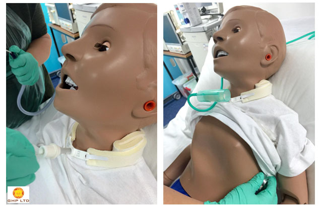 Paediatric-Tracheostomy-Care-Workshop-–-RCN-6032-CPD-1436T7-Certified
