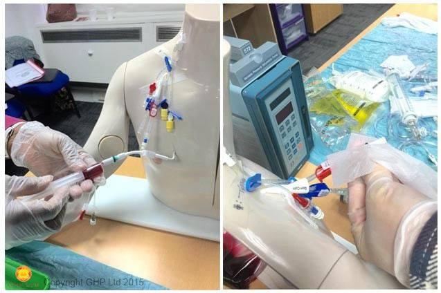 Intravenous (IV) Therapy Workshop – RCN (6511) Accredited